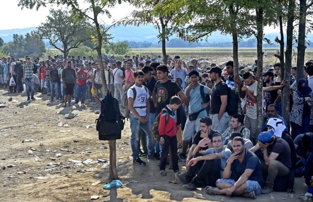 imigranți